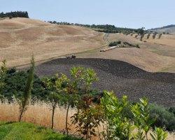 Il panorama - Agriturismo Mannaioni